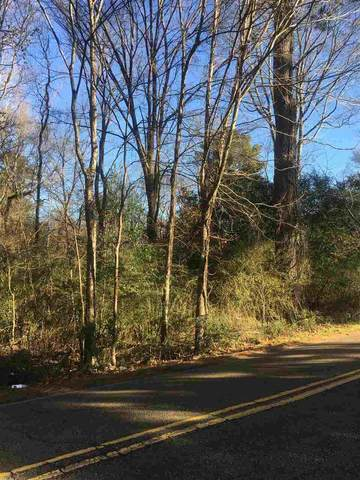 0 South Dr Metes And Bound, Jackson, MS 39209 (MLS #337229) :: List For Less MS