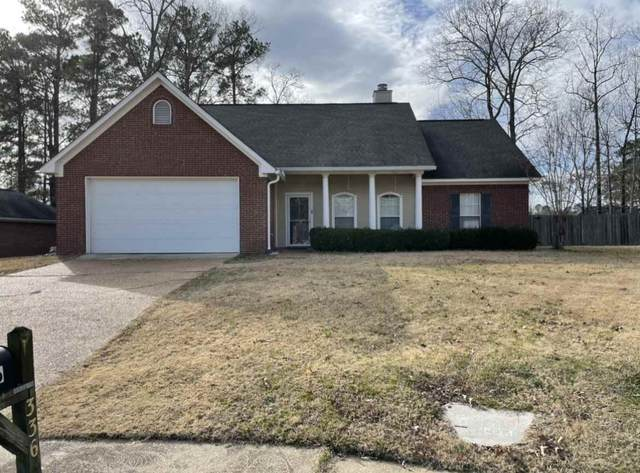 336 Afton Dr, Brandon, MS 39042 (MLS #337285) :: eXp Realty