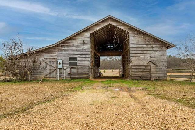 20250 Hwy 27, Utica, MS 39175 (MLS #337477) :: List For Less MS