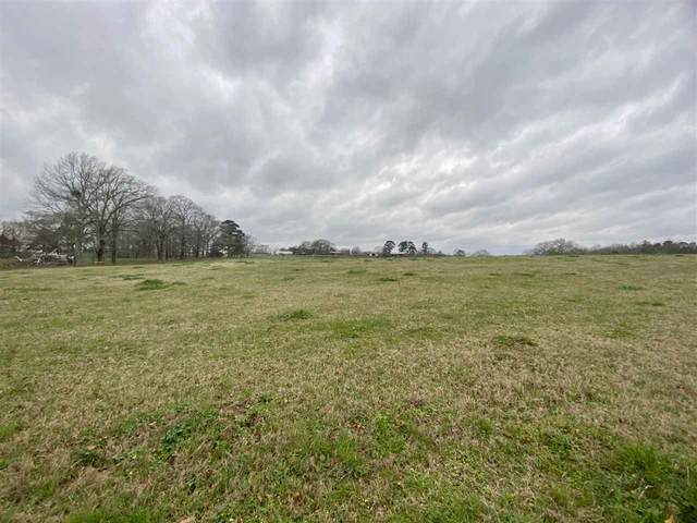 00 Kiley Bailey Road Parcel 10, Mendenhall, MS 39114 (MLS #337555) :: List For Less MS