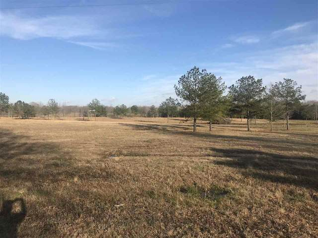 625 Petrified Forest Rd #1, Flora, MS 39071 (MLS #337587) :: eXp Realty