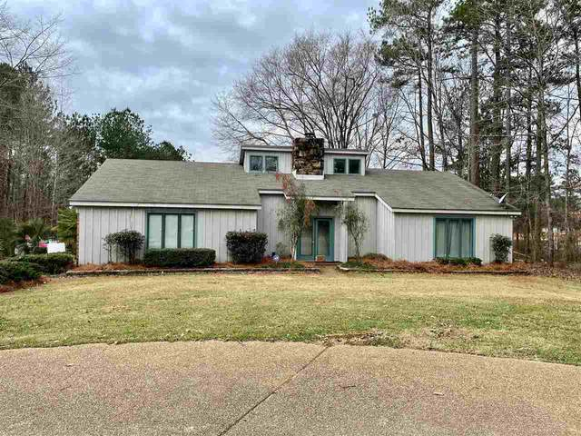 113 Springdale Dr, Terry, MS 39170 (MLS #337882) :: eXp Realty