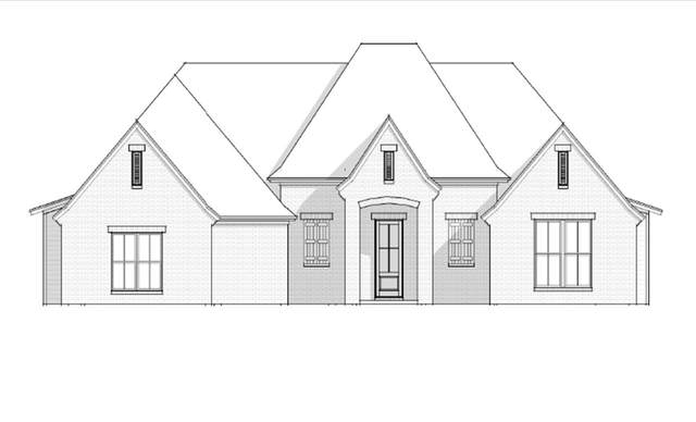 202 Kingswood Place Lot 20, Madison, MS 39110 (MLS #337919) :: eXp Realty