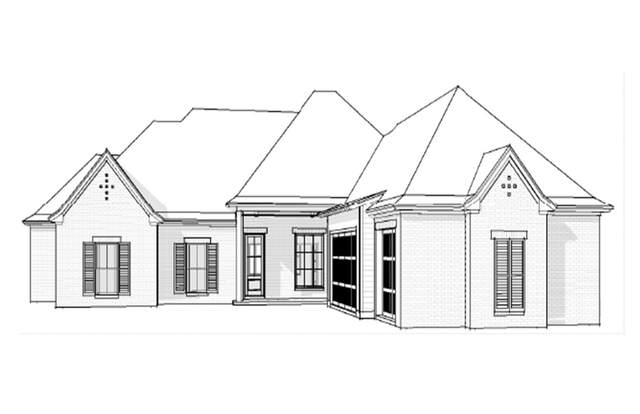 204 Kingswood Place Lot 21, Madison, MS 39110 (MLS #337922) :: eXp Realty