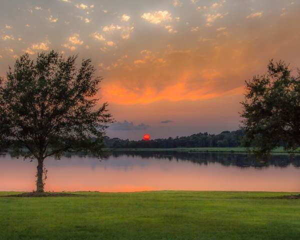 42 Windermere Blvd #42, Madison, MS 39110 (MLS #337995) :: eXp Realty
