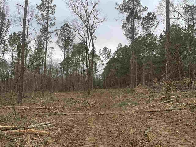 Hwy 17 #11, Canton, MS 39046 (MLS #338126) :: List For Less MS