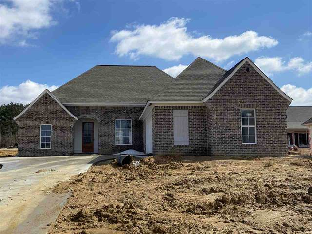 102 Sweetbriar Ct, Canton, MS 39046 (MLS #338177) :: List For Less MS