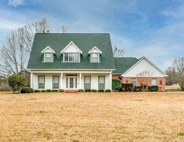 539 Bay Pointe Dr, Brandon, MS 39047 (MLS #338403) :: List For Less MS