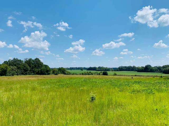 0 Hwy 17, Pickens, MS 39146 (MLS #338747) :: eXp Realty