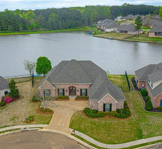 146 Mullherrin Dr, Madison, MS 39110 (MLS #338971) :: eXp Realty