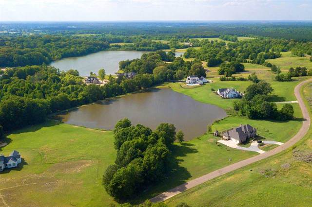 lot 104 Chestnut Hill Rd #104, Flora, MS 39071 (MLS #339243) :: eXp Realty