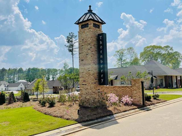 327 Wellstone Place, Madison, MS 39110 (MLS #339540) :: eXp Realty