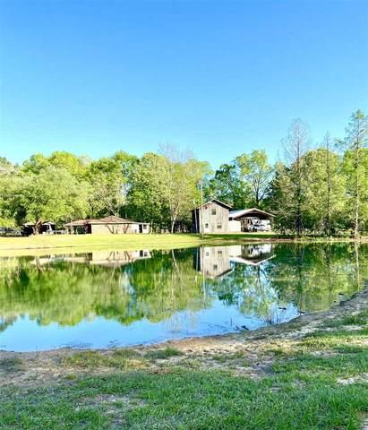 2263 Chapel Hill Rd, Utica, MS 39175 (MLS #339548) :: eXp Realty