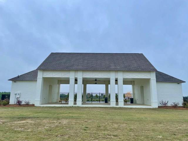 755 Glenwild Dr, Canton, MS 39046 (MLS #339563) :: eXp Realty