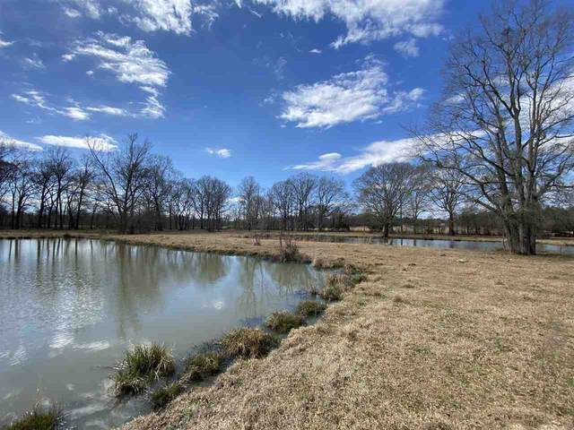 Flowers Rd, Terry, MS 39170 (MLS #339632) :: eXp Realty
