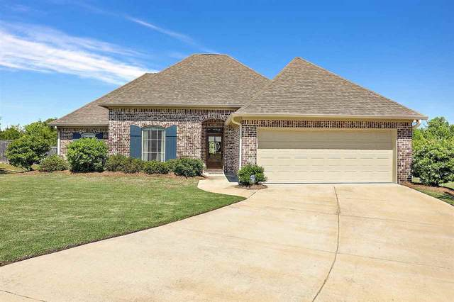 238 Bellamy Ct, Flowood, MS 39232 (MLS #339796) :: eXp Realty
