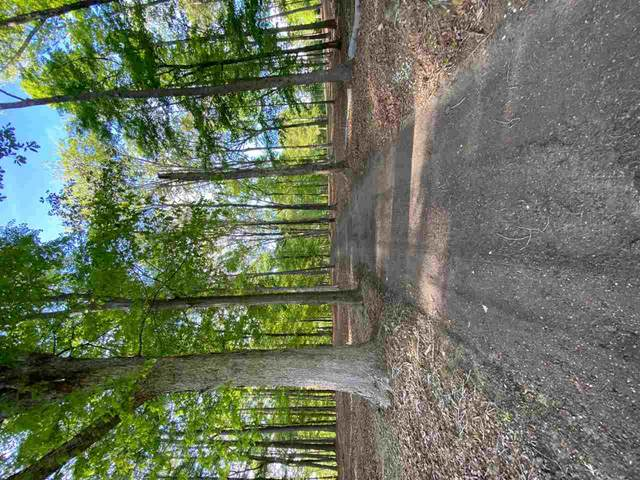 E Franklin St #0000, Carthage, MS 39051 (MLS #339823) :: eXp Realty