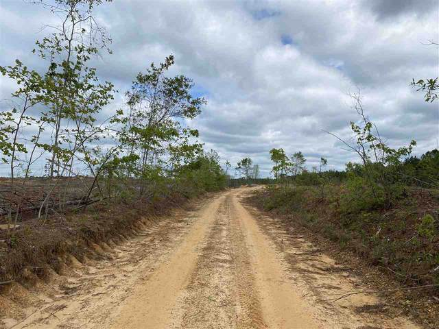 Robinson Rd, Carthage, MS 39051 (MLS #339889) :: eXp Realty