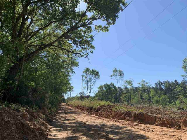 St Anne Rd, Carthage, MS 39051 (MLS #340113) :: eXp Realty