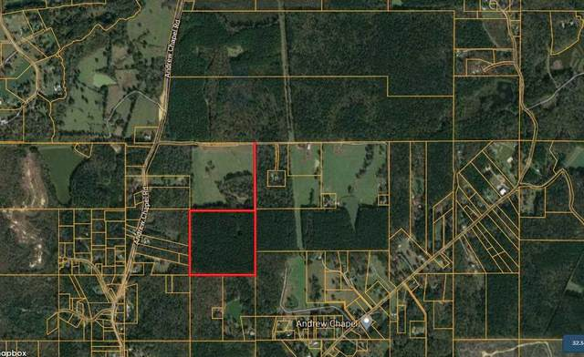 Palm Hill Road #0, Brandon, MS 39042 (MLS #340275) :: eXp Realty