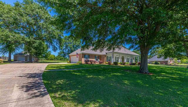 111 Northaven Dr, Jackson, MS 39209 (MLS #340400) :: eXp Realty