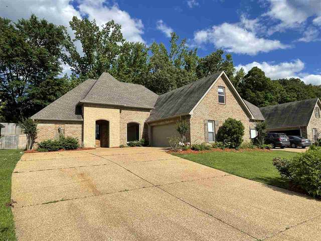 439 Julee Cir, Brandon, MS 39042 (MLS #340550) :: eXp Realty