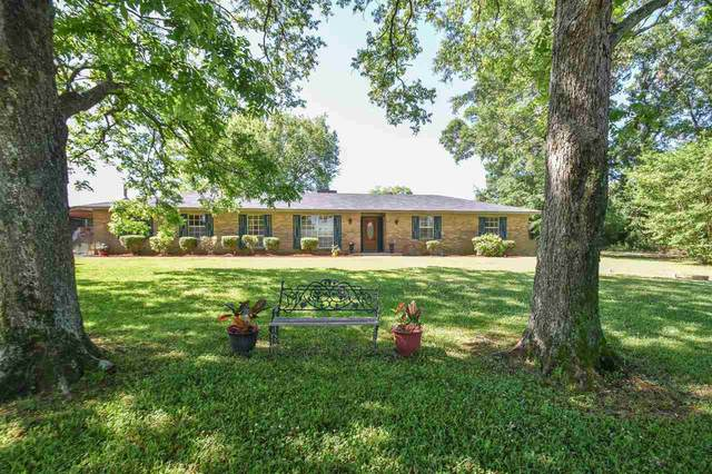 361 Moss Rd, Canton, MS 39046 (MLS #340911) :: eXp Realty
