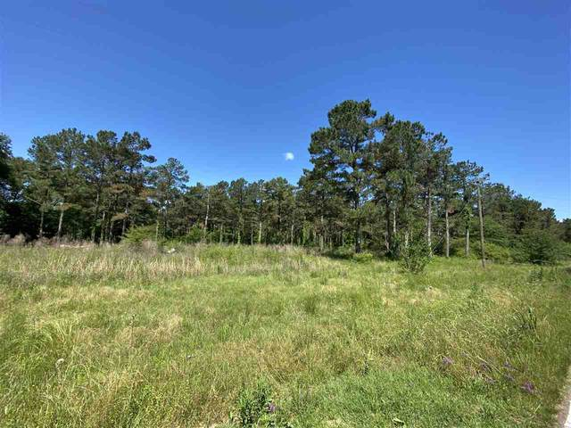 2200 Hwy 541 None #00, Mendenhall, MS 39114 (MLS #340955) :: eXp Realty