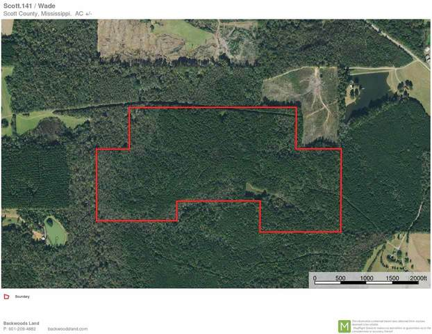 Douglas Rd, Forest, MS 39074 (MLS #341063) :: eXp Realty