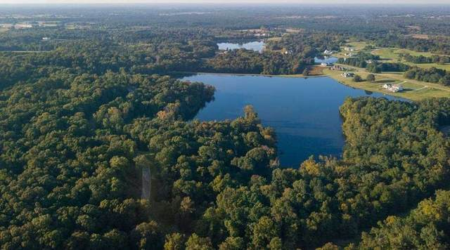 Lot 18 Chestnut Hill Rd #18, Madison, MS 39110 (MLS #341109) :: eXp Realty