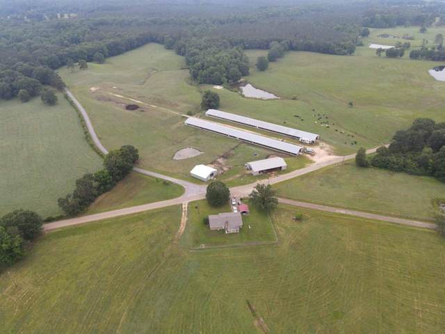 358 Doctor Magee Rd. #0, Mendenhall, MS 39114 (MLS #341393) :: eXp Realty