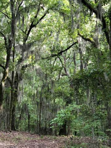 Lot #52A Chestnut Hill Rd 52A, Flora, MS 39110 (MLS #341461) :: eXp Realty