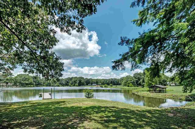 1329 Carroll Dr, Terry, MS 39170 (MLS #341987) :: eXp Realty