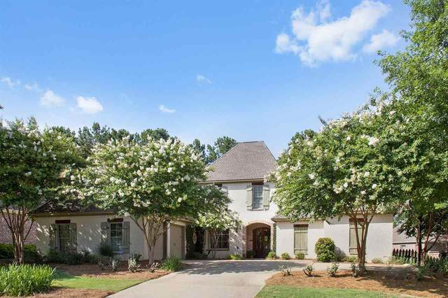 112 Chadwyck Ct, Madison, MS 39110 (MLS #342779) :: eXp Realty