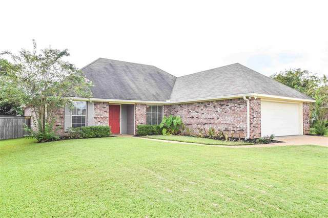 607 Wildberry Dr, Pearl, MS 39208 (MLS #344194) :: eXp Realty