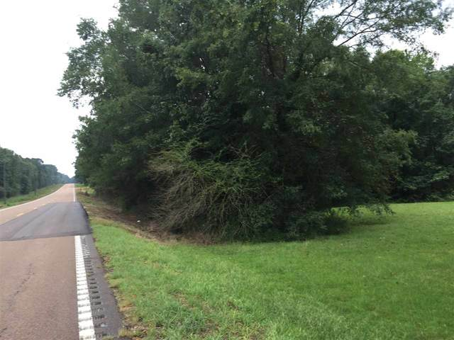 Hwy 35 S #0, Forest, MS 39074 (MLS #344311) :: eXp Realty