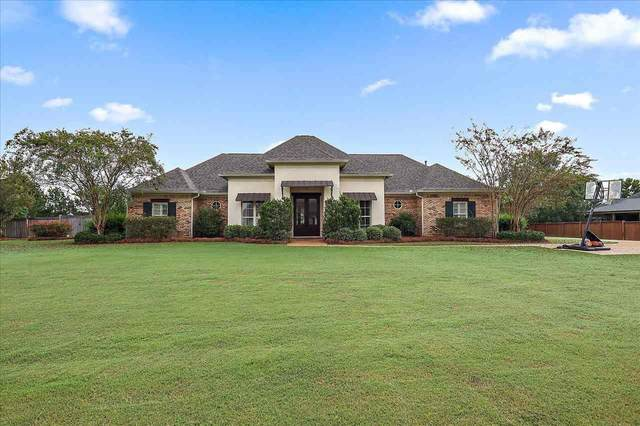 304 Chartrese Dr, Brandon, MS 39047 (MLS #344374) :: eXp Realty