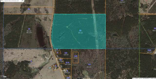 Simpson Hwy 541 South #0, Magee, MS 39044 (MLS #344398) :: eXp Realty