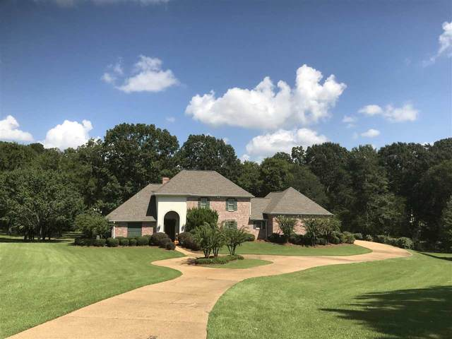 242 Dover Ln, Madison, MS 39110 (MLS #344429) :: eXp Realty
