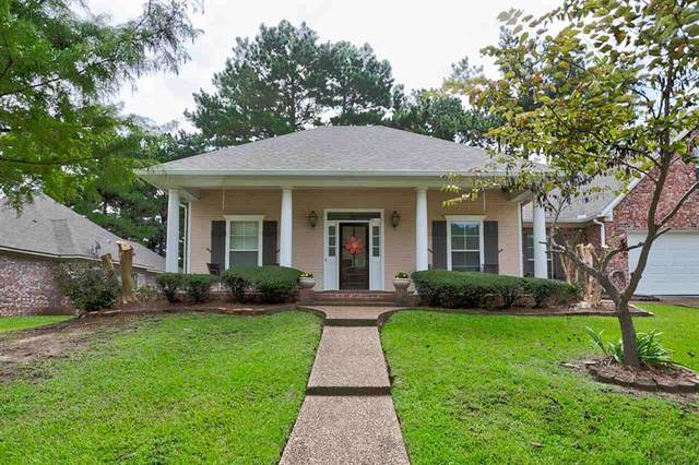 104 Brierfield Dr, Madison, MS 39110 (MLS #344443) :: eXp Realty