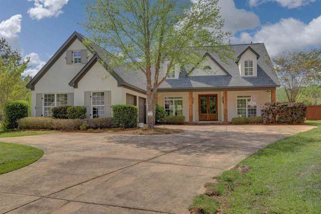 712 Chickasaw Dr, Flowood, MS 39232 (MLS #344463) :: eXp Realty
