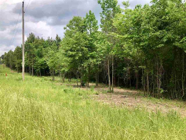 Highway 43 None 3 And 4, Pelahatchie, MS 39145 (MLS #344681) :: eXp Realty