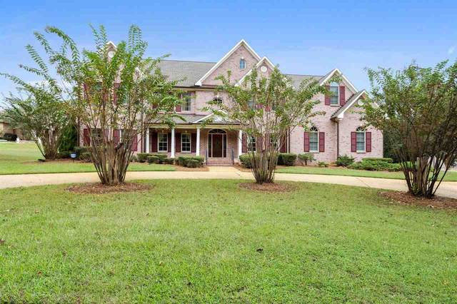 104 Overbrook Hill, Ridgeland, MS 39157 (MLS #344906) :: eXp Realty