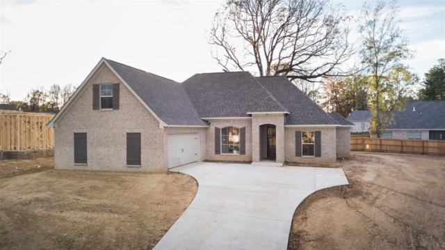 141 Federal Cove, Madison, MS 39110 (MLS #300505) :: RE/MAX Alliance