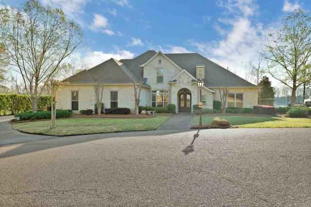 10 Gadwall Pte, Raymond, MS 39154 (MLS #306771) :: RE/MAX Alliance