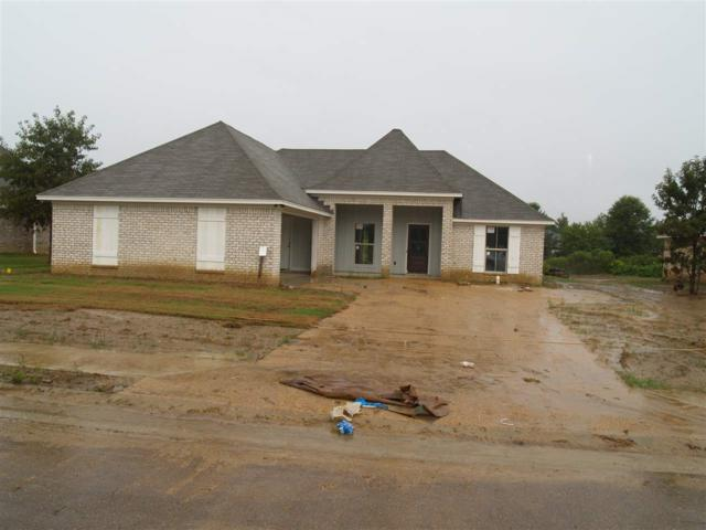 115 Bankside Dr, Canton, MS 39046 (MLS #309450) :: RE/MAX Alliance