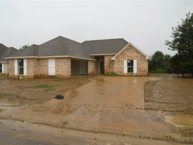 113 Bankside Dr, Canton, MS 39046 (MLS #309452) :: RE/MAX Alliance