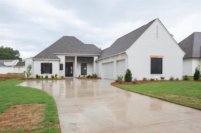 127 Colony Pl, Madison, MS 39110 (MLS #311946) :: RE/MAX Alliance