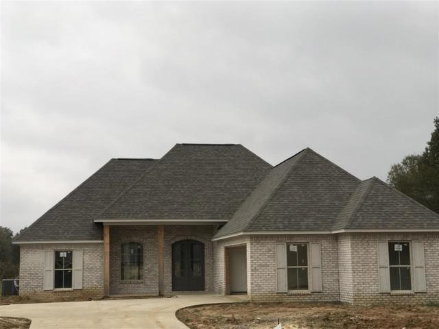 123 Bridge Walk Dr, Canton, MS 39046 (MLS #314087) :: RE/MAX Alliance