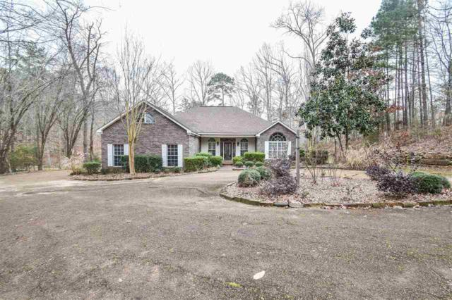 414 Point Dr, Brandon, MS 39047 (MLS #315365) :: RE/MAX Alliance